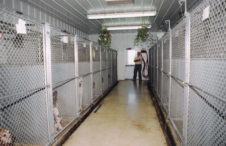 Pet Kennels in Clearfield / Kenneling and Grooming at Evergreen